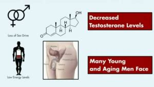 ageless pills side effects ageless review a free testosterone booster