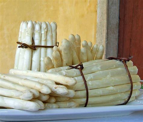 asparagi come cucinarli asparagi bianchi come cucinarli
