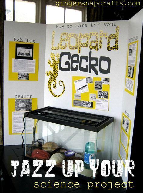 Science Fair Science Fair Display Board And Science On Science Fair Presentation Ideas
