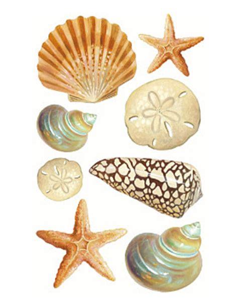 Border Stiker Shells Blue 2011 List Stiker styles decor accents completely coastal