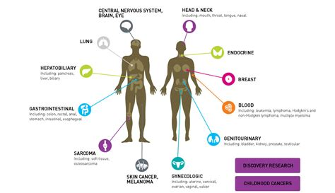 types of cancer pictures types of cancer onewalk one walk