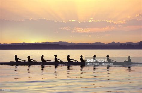 boat rowing images team rowing boat in bay stock photo getty images