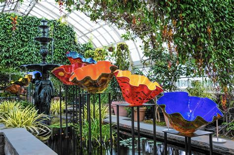 Botanical Gardens Glass Exhibit Chihuly Glass Exhibit Blooms In The Bronx Chicago Tribune