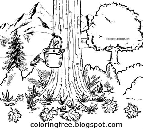 Free Coloring Pages Printable Pictures To Color Kids International Tree Coloring Page