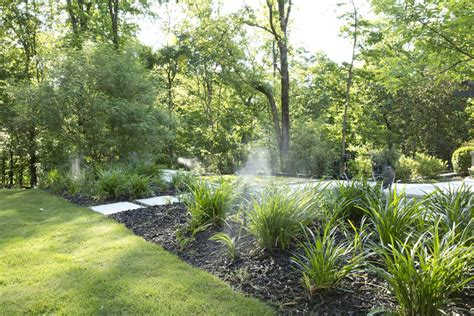 mosquito solutions backyard mosquito control information