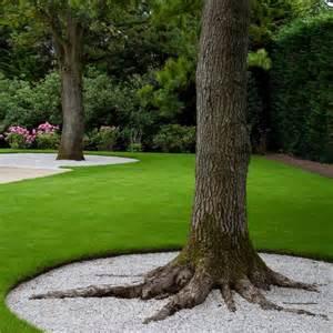 Landscape Edging Around Tree Roots Casagiardino Pea Gravel Base Driveway Oak Use