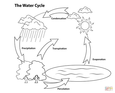 simple water diagram simple water cycle diagram coloring pages education