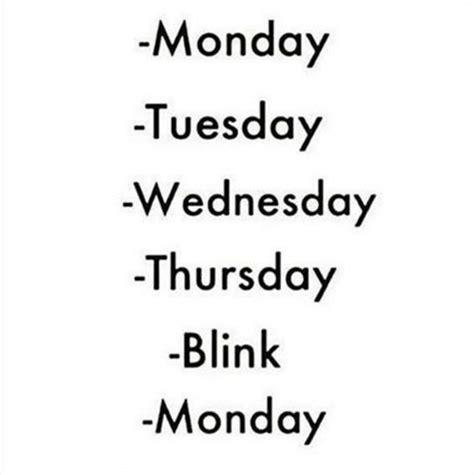 Monday School Meme - the 25 best ideas about back to school meme on pinterest