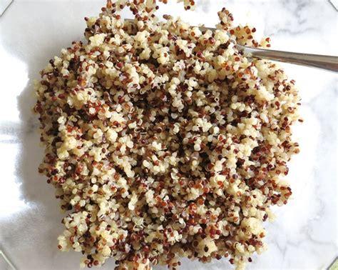tri color quinoa quinoa black bean burgers with guacamole my lilikoi