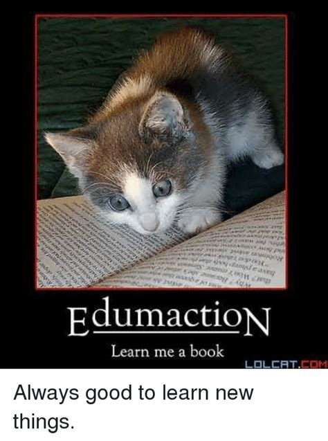 Lolcat Meme - edumaction learn me a book lolcat com always good to learn