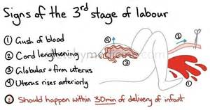 There are three stages of labour even though most people just think