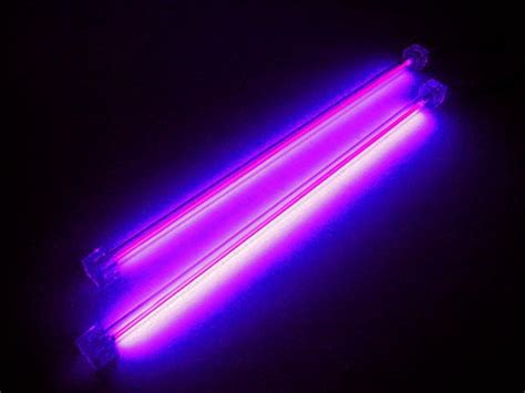 Uv Lights by Do You Blue Did You That We All Descend