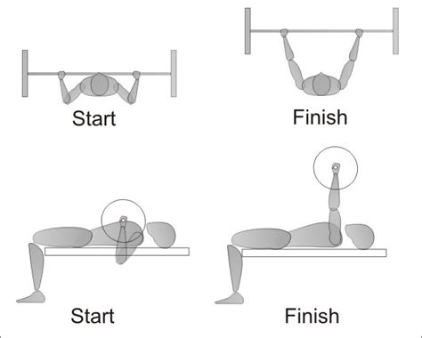 bench press diagram bench press