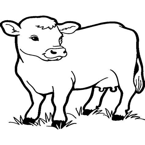 vaca para dibujar dibujos para colorear dibujos de vacas para imprimir