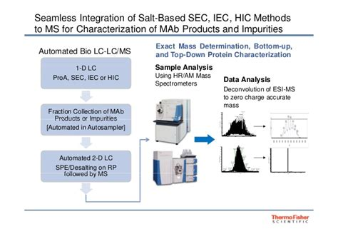 Cd Seamless 31081 chromatography trends and developments in mab screening