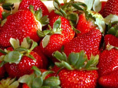 ina garten balsamic strawberries ina garten balsamic strawberries 100 ina garten balsamic