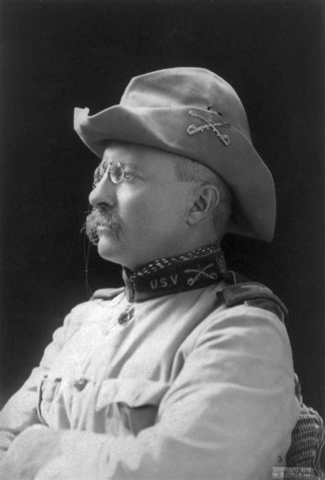 presidency of theodore roosevelt wikipedia the free theodore roosevelt military wiki fandom powered by wikia