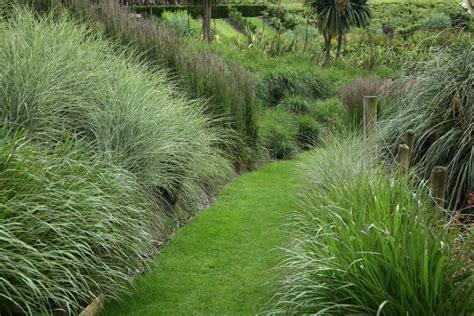 manutenzione giardini manutenzione giardini agriverde