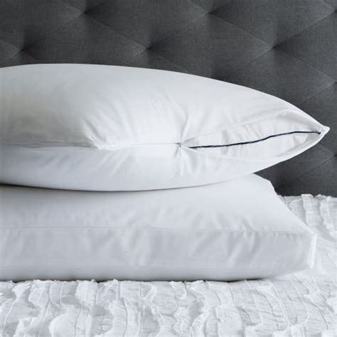 Fresh Pillow by Ultra Fresh Pillow Protectors West Elm