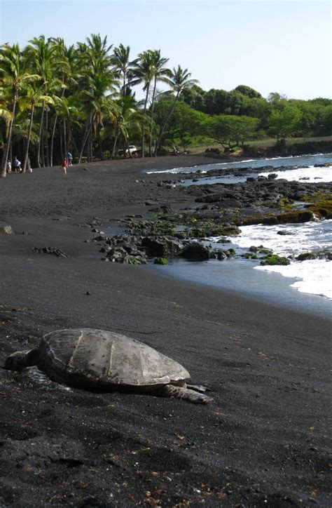 beach with black sand most outstanding beaches in the world