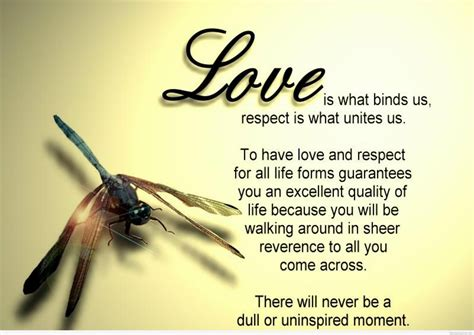 images of love quotes love quotes high definition and high quality wallpapers