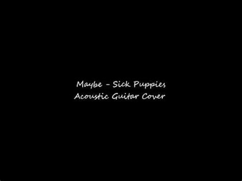 maybe sick puppies maybe sick puppies acoustic guitar cover and chords in description