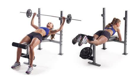 gold gym workout bench gold s gym xr 6 1 weight bench groupon goods