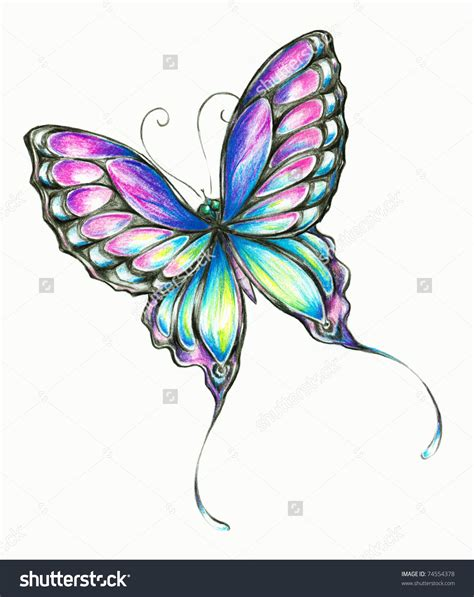 drawings with color pencil drawings of butterflies with colours butterfly