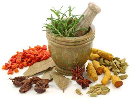 traditional medicine correspond to your temperament traditional medicine