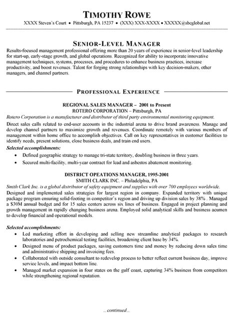 sle account manager resume objective sales manager resume exle