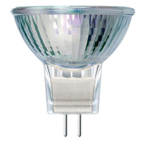 Landscaping Light Bulbs Philips 10 Watt 12 Volt Halogen Mr11 Landscape Lighting And Indoor Flood Light Bulb 417220 The
