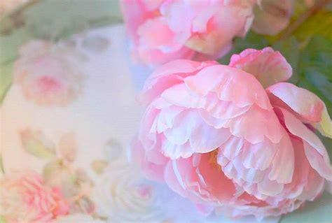 wallpaper flower romantic flowers valentines sweet seasons peonies beloved beautiful