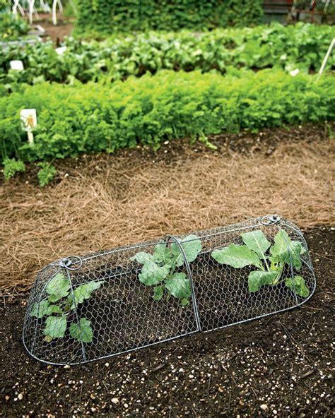 Plastic Garden Edging Ideas 17 Best Ideas About Plastic Lawn Edging On Plastic Garden Edging Plastic Landscape
