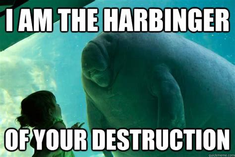 Shredding Meme - 11 times our overlord manatee asserted there will