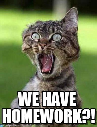 Homework Meme - we have homework screaming cat meme on memegen