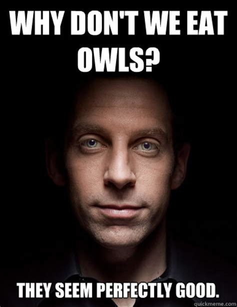 Meme Sam - why don t we eat owls they seem perfectly good scumbag
