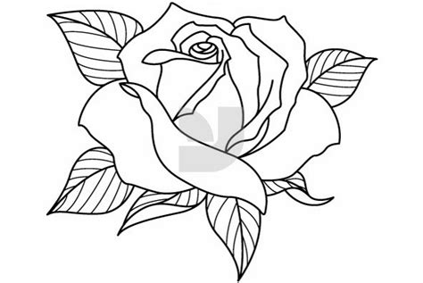 coloring pages of different types of flowers rose drawing flowers