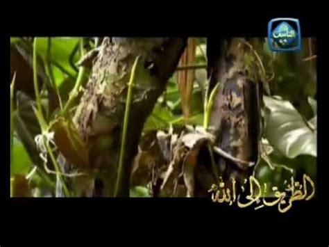 asma ul husna mp3 download mishary asma allah ul husna mishary al afsay youtube