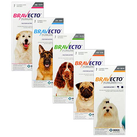 Bravecto Flea Pill For Cats - bravecto chews for dogs free shipping 1800petmeds
