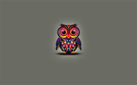 colorful owl colorful owl hd wallpaper cool owls