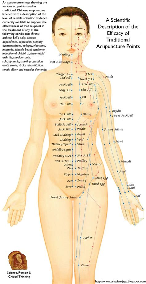 acupressure diagram of pressure points the reason stick scientifically accurate labelling of the