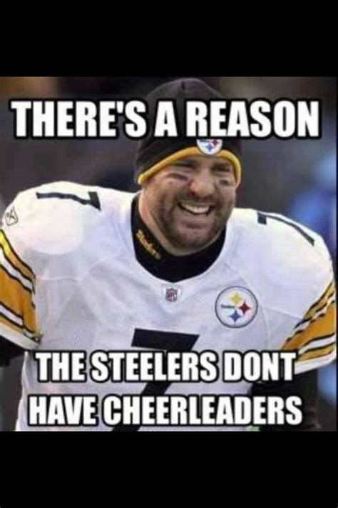 Steelers Fans Memes - 82 best steelers suck images on pinterest cincinnati