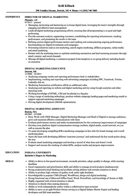 test analyst resume sles velvet data analyst description resume 7 languages