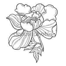fiori stilizzati in bianco e nero risultati immagini per cornici fiori stilizzati in bianco