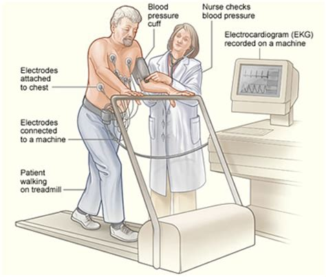 the stress test how pressure can make you stronger and sharper books treadmill stress test doctor los angeles santa
