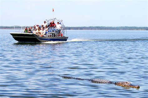 everglades boats wikipedia file alligator sighting black hammock airboat rides jpg