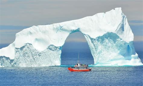 iceberg quest boat tours the ultimate summer guide to canadian adventures travel