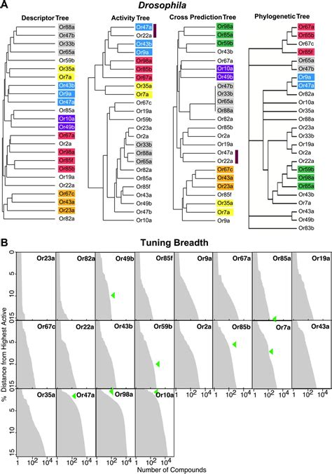 Decoding Odours One Molecule At A Time by Figures And Data In Expanding The Olfactory Code By In