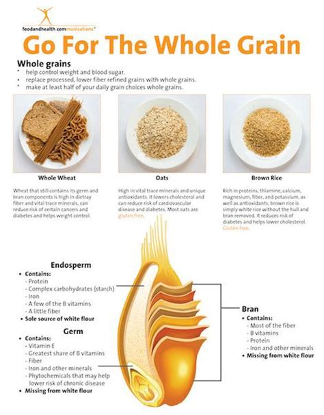 whole grains handout all about whole grains tearpad color handout tearpad