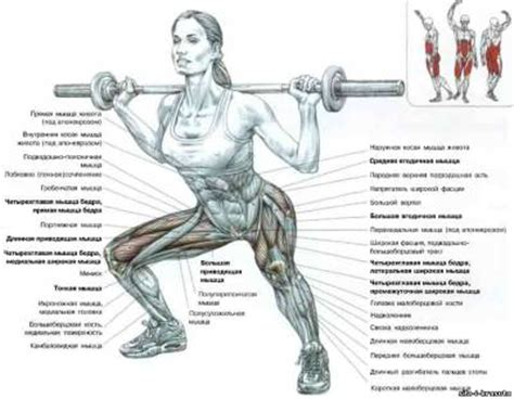 bench press muscles and joints used how to get rid of fat in stomach shoulder popping and